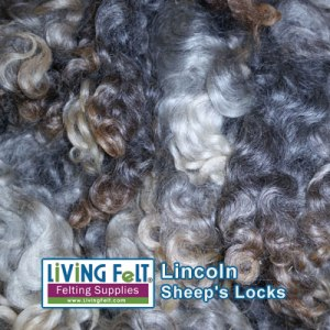 Lincoln Locks (undyed) washed with Unicorn Beyond Clean