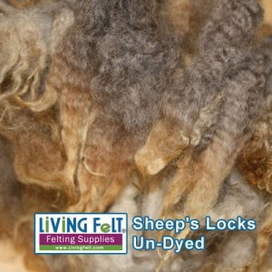 Shetland Locks Washed with Unicorn Beyond Clean